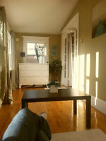 51 West St 1 bedroom Apartment for sublet