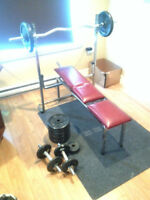 PECK DECK AND BENCH PRESS + 150 POUNDS OF WEIGHTS