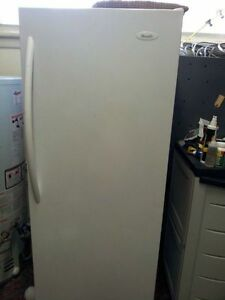 NICE WOODS UPRIGHT FREEZER