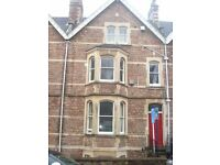 Large Hall Floor 1 bedroom flat just off Whiteladies Road