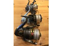 Big pit/sea fishing reels