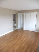 Spacious 1bedroom apartment