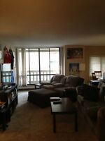 2 Bedroom Furnished Apartment, extremely close to U of A!
