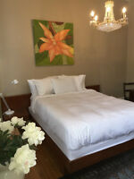 Room for Rent -Sandy Hill historic home near UofO Sept 1-May 1