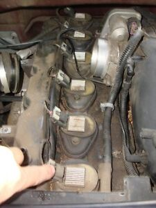 Trailblazer / Envoy used coil packs for a 4.2L