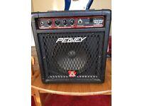 Peavy practice bass amp