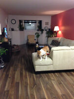 Ground floor 2 bedroom condo for rent for Sept. 1, DOG FRIENDLY