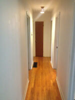 3-BDRM HOUSE - Great for professionals or students