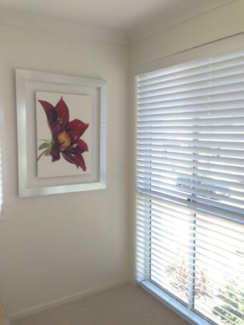 50mm Timber Venetian Blinds - All Window Coverings lowest price