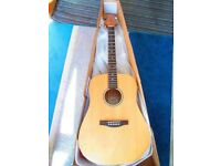 Ashton D45S Acoustic (Solid Body) Great all round guitar