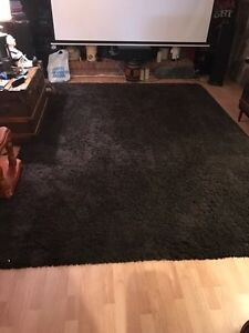 Beautiful large chocolate brown shag rug