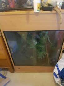 Wooden and Glass Reptile Tank (open to decent offers)