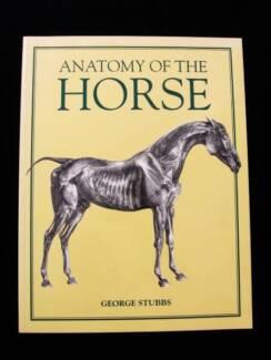Anatomy of The Horse - George Stubbs
