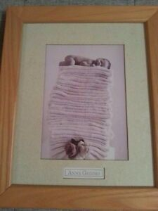 Anne Geddes Beautifully Matted And Framed Prints Peterborough Peterborough Area image 3