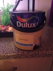 Dulux paint lemon tropics