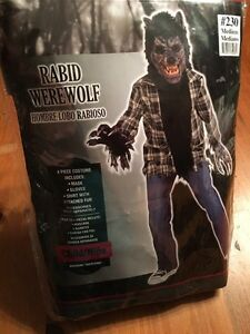 Amazing deal on kids Halloween costumes. Werewolf and Gypsy