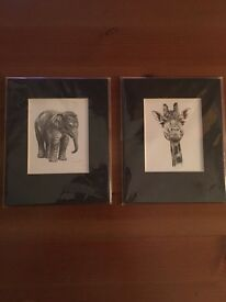 Elephant and Giraffe Prints