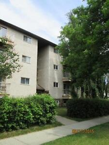 $49 Security Deposit Adult Only Building