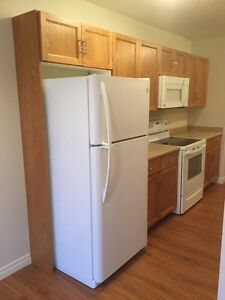 2  bedroom apt for rent in Kincardine ( April 1st available]