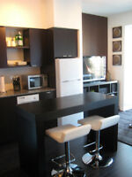 Yonge/Bloor - Fully Furnished Corporate 1 Bdrm – June 1