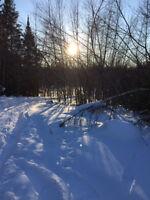 En plein coeur de la nature | Magnifique terrain 1.7 acres