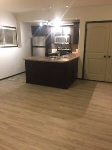 Newly renovated 2Bdrm Lower Suite. BEAUTIFUL! New Clearview