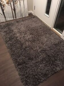 Beautiful Area Rug 3x4