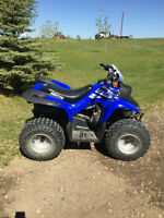 Aeon Cobra 100cc Quad Atv