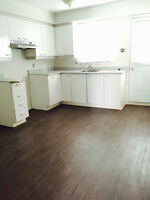 Very large 4 1/2 completely renovated for May, June or July