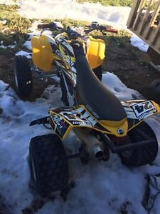2013 Can-Am DS 450