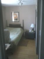 quiet clean and safe room for rent