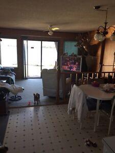 Cottage for removal at katepwa  Regina Regina Area image 5