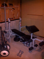 Weight lifting bench, accessories and weights, sit up bench