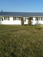 House for rent Elmsdale area