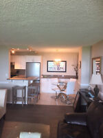 Newly Renovated and Fully Furnshed Apartment for lease