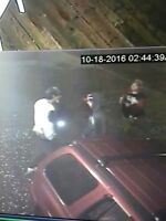 Identify these thieves?