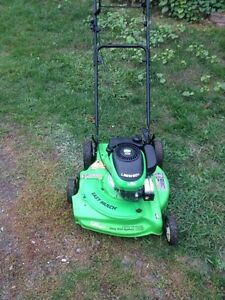 "**21"" Lawnboy, Self Propelled***SOLD PPU"