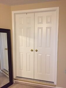 Set of Solid White French Doors