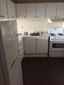 One bedroom apartment sublet for December