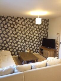 Double room in a beautiful flat with own bathroom