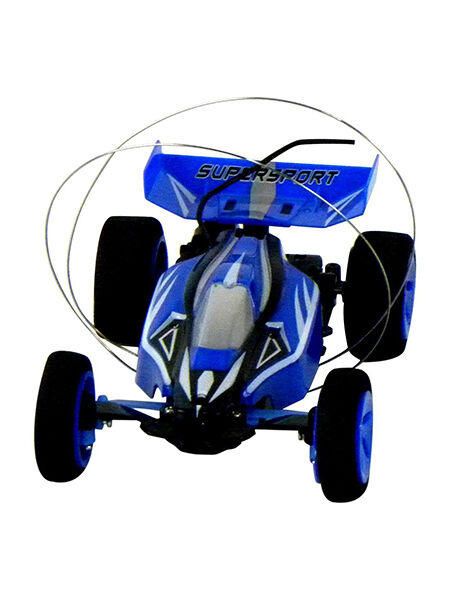 Super Buggy Self Righting Mini RC Car