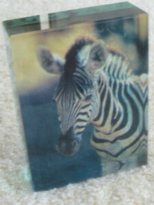ATTRACTIVE ZEBRA PAPER-WEIGHT