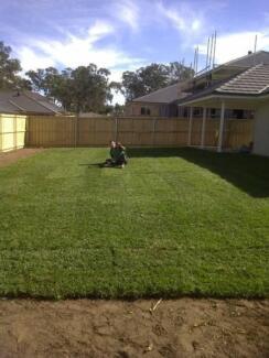 Sapphire soft Buffalo lawn / Turf Sydney City Inner Sydney Preview