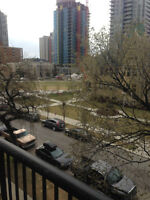Downtown 1 Bedroom Apartment in Connaught