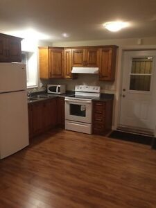 Two bedroom apartment  St. John's Newfoundland image 1