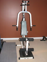 Fitness Machine by Pacific Fitness