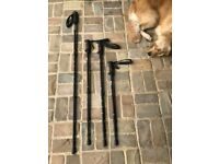 Walking Poles (2 pairs), fully adjustable with shock-absorption