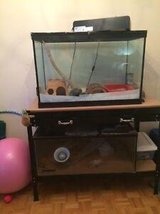 Aquariums, workbench, various reptile lights
