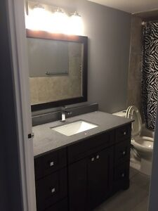 2 BEDROOM ALL INCLUSIVE (NEWLY RENOVATED) London Ontario image 10