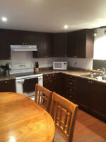 ***STUNNING** McMaster 3 bdrm Basement Unit **ALL INCLUSIVE**